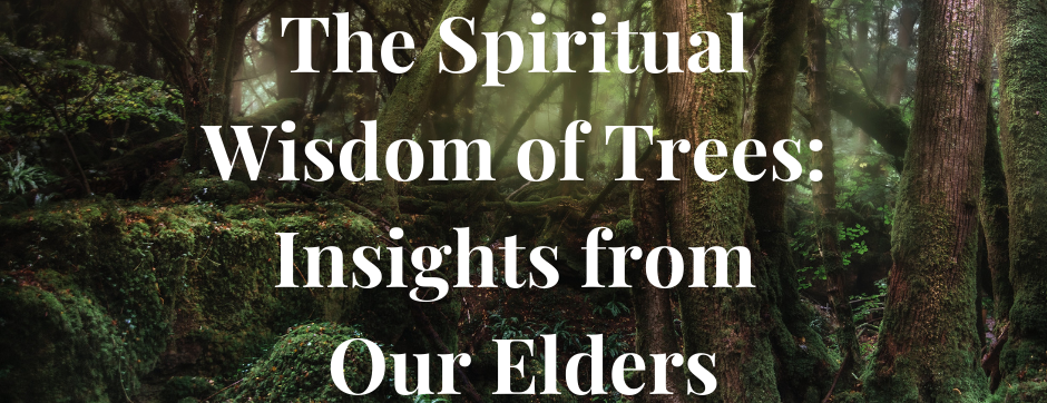 The Spiritual Wisdom of Trees: Insights from Our Elders!